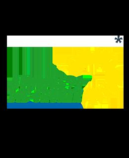 Buendnis 90 Die Gruenen Logo